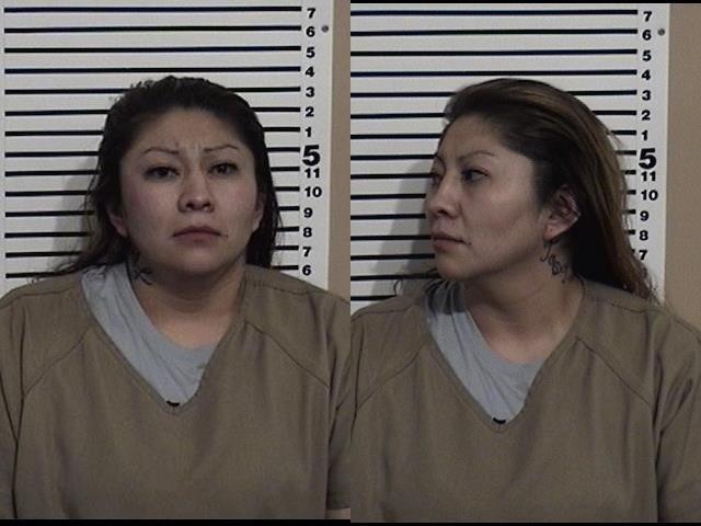 02-15-2019 Arrest of wanted subject and Pursuit | Bonneville